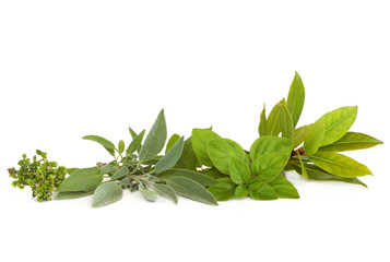 Thyme, Sage, Oregano and Bay Herbs