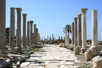 Tyre Roman Columns, Lebanon