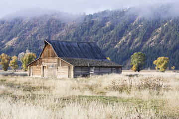Remote Barn in an Open Field