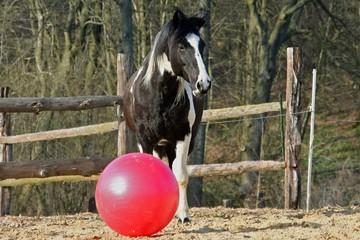 Winnetou mit Ball