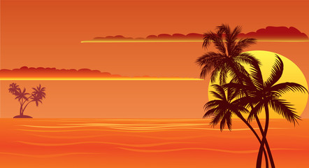 tropical sunset beach with palms