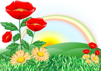 Papaveri e margherite-Poppies and Daisies-Vector