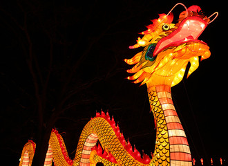 Chinese Traditional Light Festival