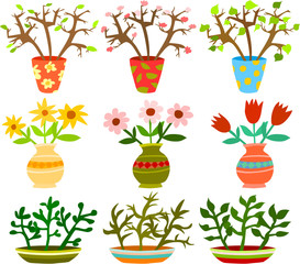Set of a flowers in vases