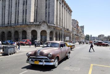 Garden Poster Cars from Cuba Cuba heute