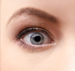 Attractive image of a female eye