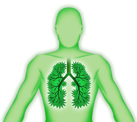 Corpo umano tridimensionale con polmoni-albero su bianco