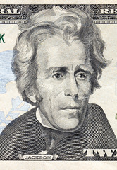 Portrait jackson on twenty American dollars