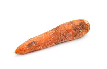 Old carrot
