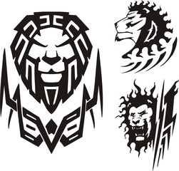 Three drawings of a lion. Tribal predators.