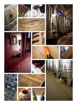 Vin et vinification