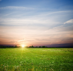 green field and sunrise