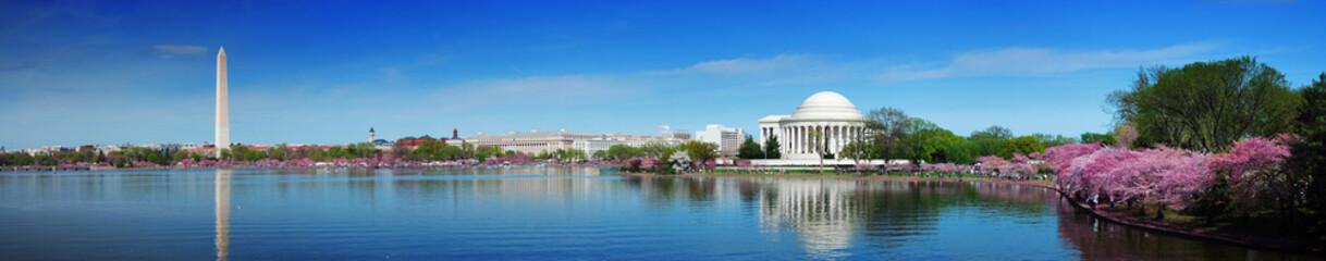 Fotobehang Kersenbloesem Washington DC