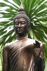 buddha image with tree background