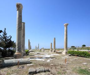 Tyre Roman Columns archeological site, Lebanon