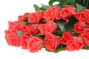 big bouquet of beautiful is bright-pink roses