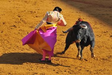 Tuinposter Stierenvechten Corrida - Torero dancing with the Bull