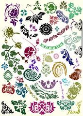 color flower elements collection