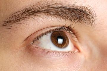 Das scharfe Auge