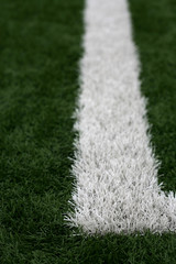 Green and White Astroturf
