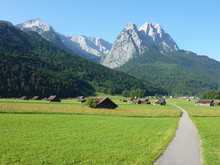 Zugspitze Wall mural