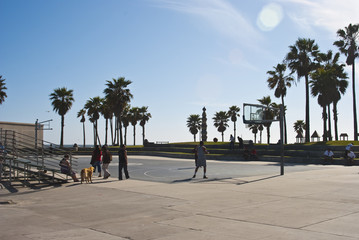 venice basketball 1 of 5