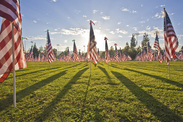 1,100 3-foot-by-5-foot American flags