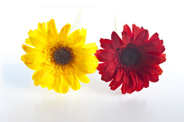 artificial flower - yellow and red