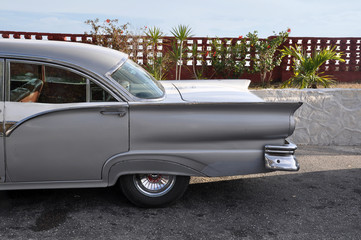 Garden Poster Cars from Cuba 50er Jahre
