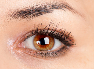 beautiful make up eyeshadow.