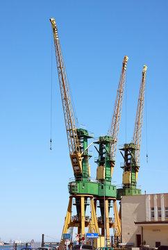 Cranes in port - Gdynia harbor master