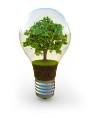 Energie und Ökologie
