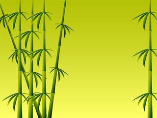 Bamboo background horizontal