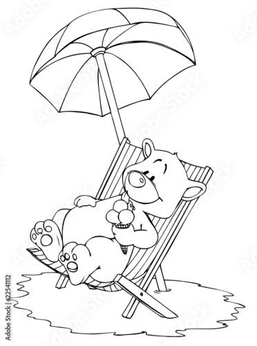 u0026quot b u00e4r  teddy  teddyb u00e4r  urlaub  ferien  strand  s u00fcdsee
