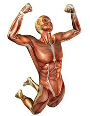 Wall Mural - springender Mann Muskelstudie