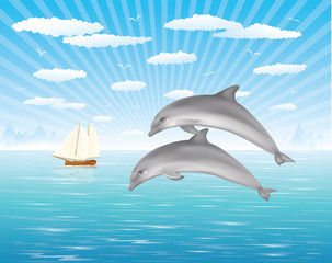 Two dolphins.