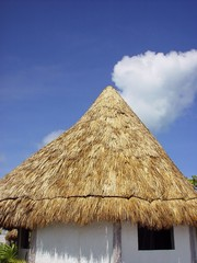 beautiful palapa in the caribbean sea
