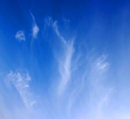 tiny clouds