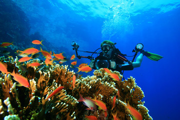 Scuba diver with camera on coral reef