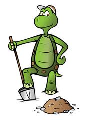 Turtle Shoveler