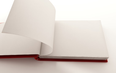 Modern blank book with flipping pages