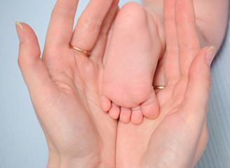 Heel of the baby in hands of mum
