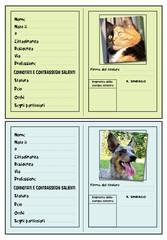 carta d'identità per pet