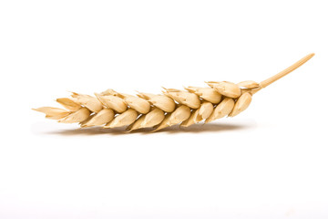 Dried Cereal Ear