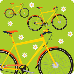 Ecological Concepts #2: Cycling