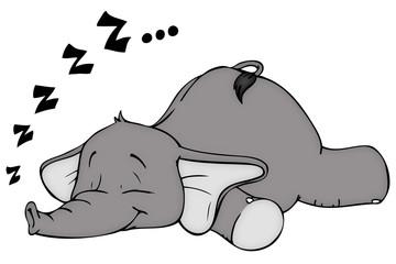 Elefant, schlafen, Schlaf, schnarchen, träumen