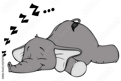 elefant schlafen schlaf schnarchen tr umen stockfotos und lizenzfreie bilder auf fotolia. Black Bedroom Furniture Sets. Home Design Ideas