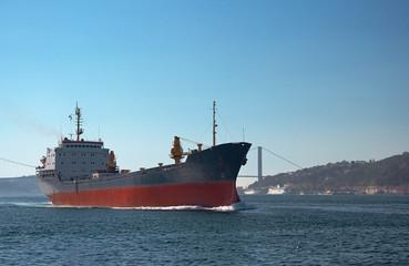 A cargo ship in the Bosphorus