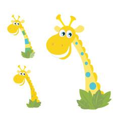Three yellow giraffe heads isolated on white. VECTOR
