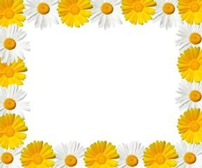 daisy frame - high resolution